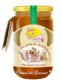 Miel de aragon Flora Serrana cruda artesana