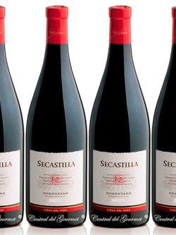 Secastilla 2011 vino gourmet Somontano Caja