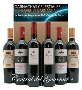 selection wines gourmet