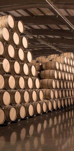 Bodegas LAN Rioja barricas