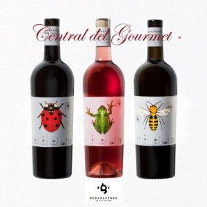 Vinos ecológicos gourmet BodegaVerde