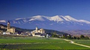 Bodegas Aragonesas paisaje