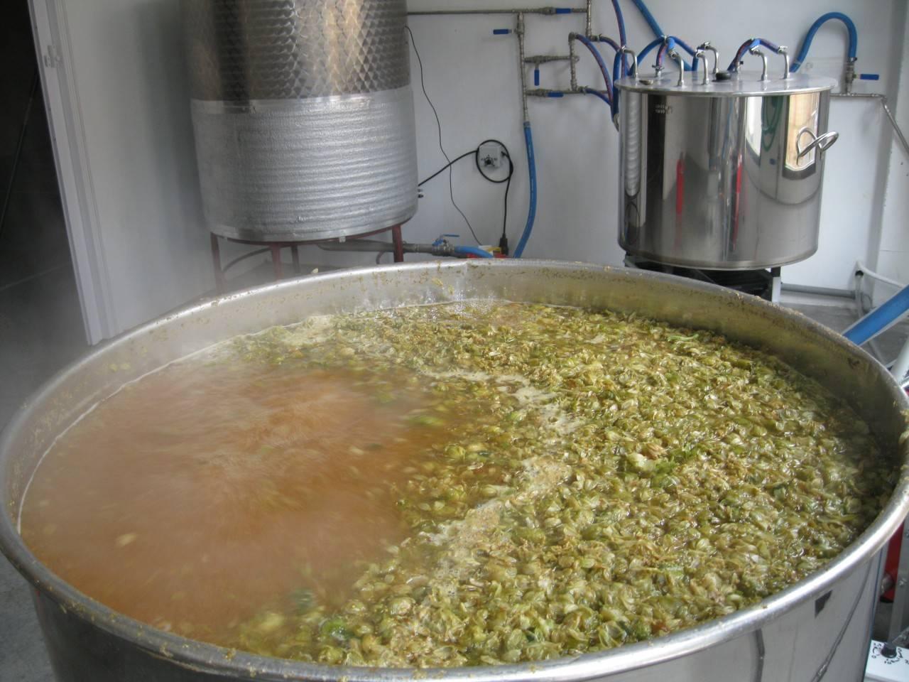 cervezas Roya artesanas fabricacion