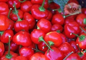 Rosara Pimiento Cherry Relleno Queso Tarro 250gr