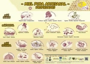 Pure honey artisan Jalea de Luz, properties of different types of honeys.