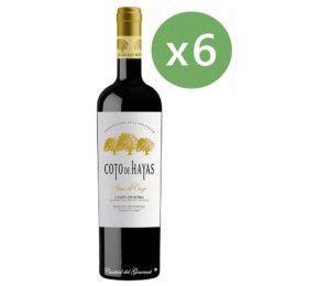 Coto de Hayas Viñas del Cierzo, tinto reserva D.O. Campo Borja, caja 6 botellas 75cl