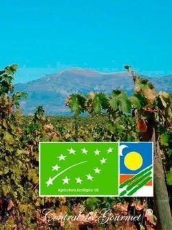 Vinos Ecológicos Gourmet